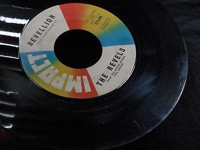 1d-the-revels-with-robert-hafner-the-monkey-bird-revellion-garage-surf-rock_8033758