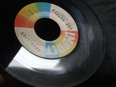 1d-the-revels-with-robert-hafner-the-monkey-bird-revellion-garage-surf-rock_8033766