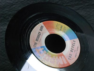 1d-the-revels-with-robert-hafner-the-monkey-bird-revellion-garage-surf-rock_8033783