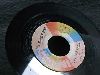 1d-the-revels-with-robert-hafner-the-monkey-bird-revellion-garage-surf-rock_8033787