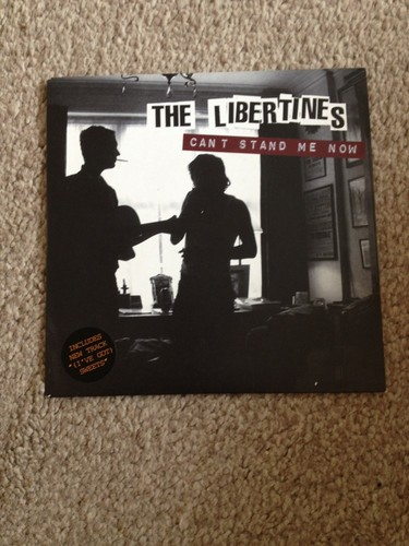 The Libertines Cant Stand Me Now